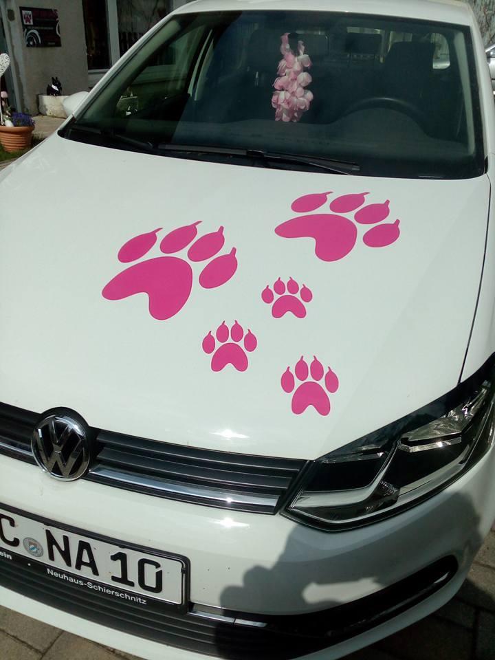 Pfötchen Aufkleber Sticker Für Auto Und Glas